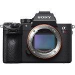 Sony Alpha a7R III Mirrorless Digital Camera