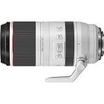 Canon RF 100-500mm f/4.5-7.1L IS USM Lens (EOS R)