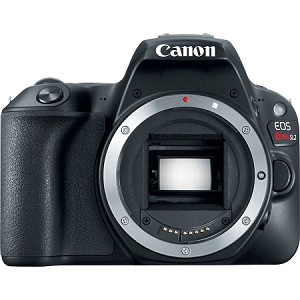 Canon Rebel SL2 ( Body Only )